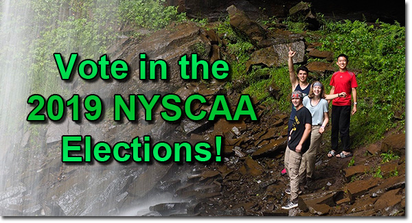 Cast your ballot in the 2019 NYSCAA Elections!